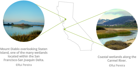 California map with wetlands photos