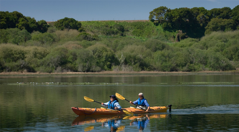 Kayaks on Elkhorn Slough
